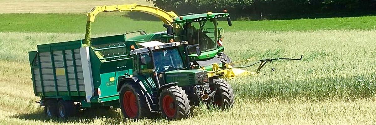 Permalink auf:Ganzpflanzensilage (GPS)